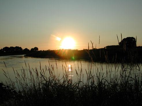 Sonnenaufgang an der Aller / Bild: Margret Dannemann-Jarchow